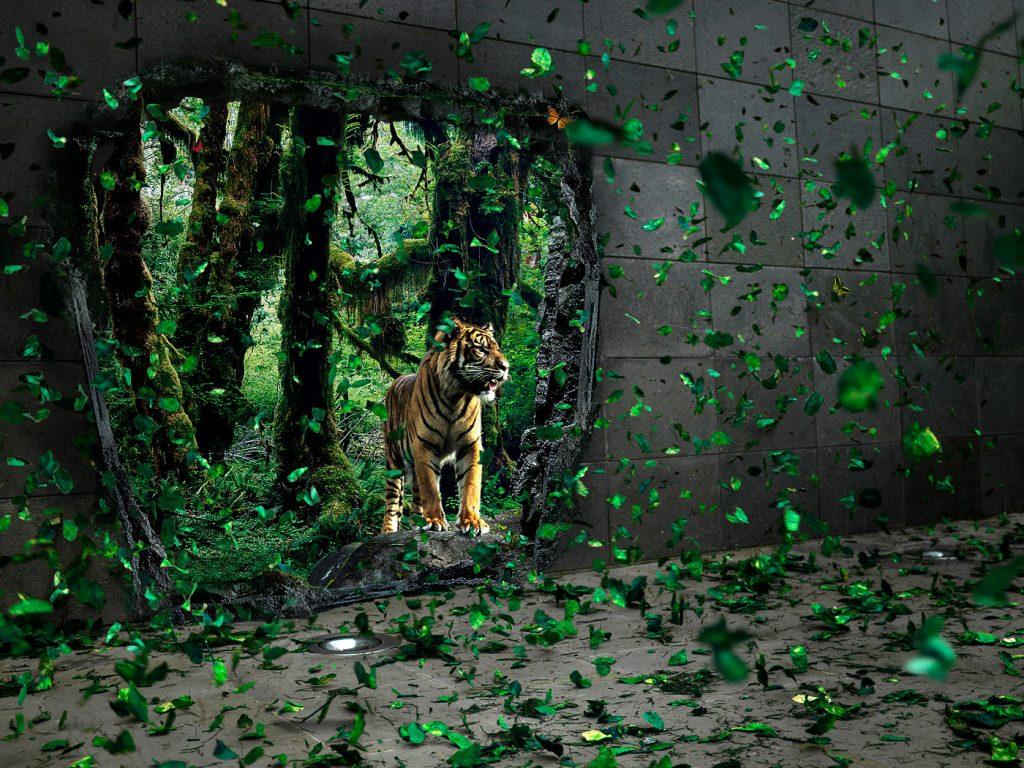 Beautiful Wallpaper High Resolution Ipad - original-142-32apxdqeo5zheqbfozoni8  Pictures_8626100.jpg